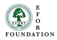 EFORT FOUNDATION: Medacta Visiting Fellowship 2016